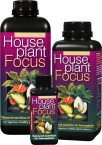 House Plant Focus 300 ml